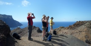 St Helena Travel and Tours